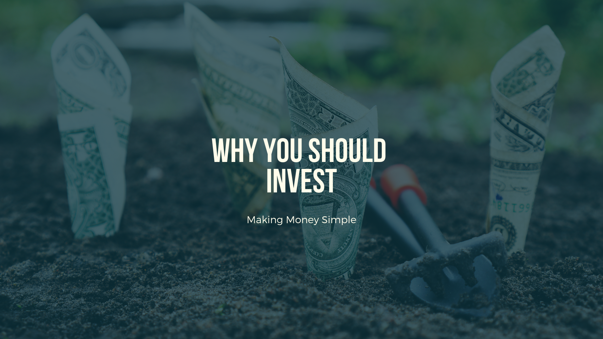Why You Should Invest